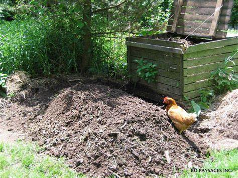 Composte image article écologie